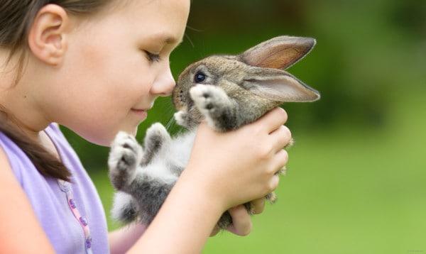 conigli-e-bambini
