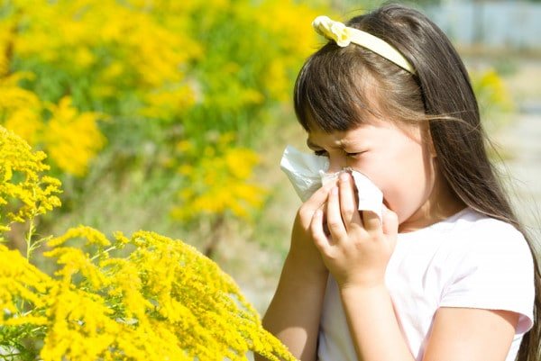 allergia-e-coronavirus