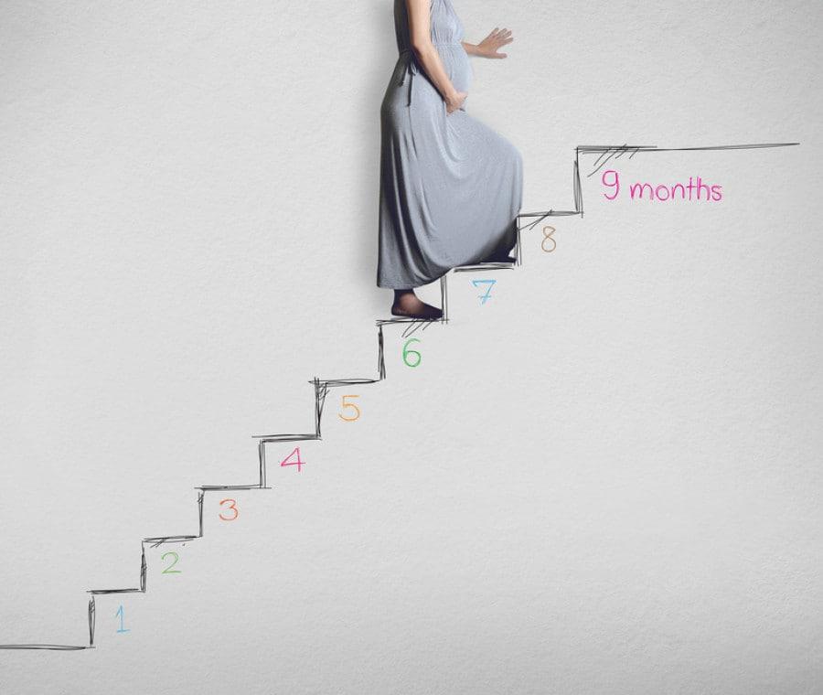 settimane-di-gravidanza-2