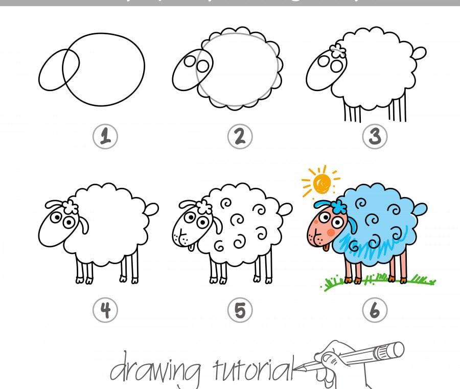 disegno-pecora