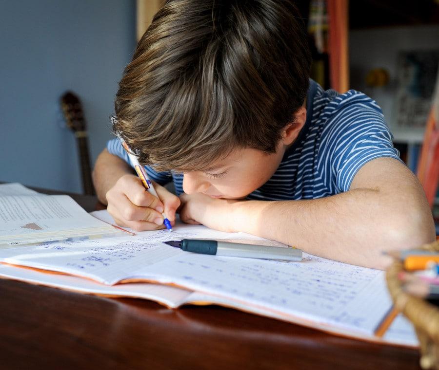 bambino-studia