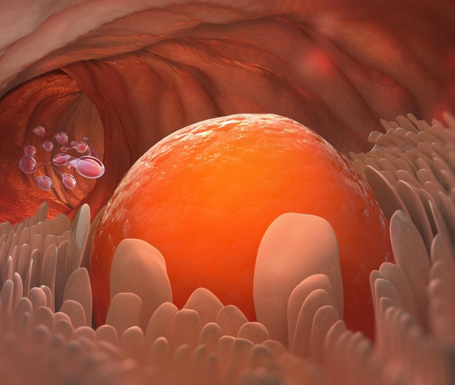 ovulazione