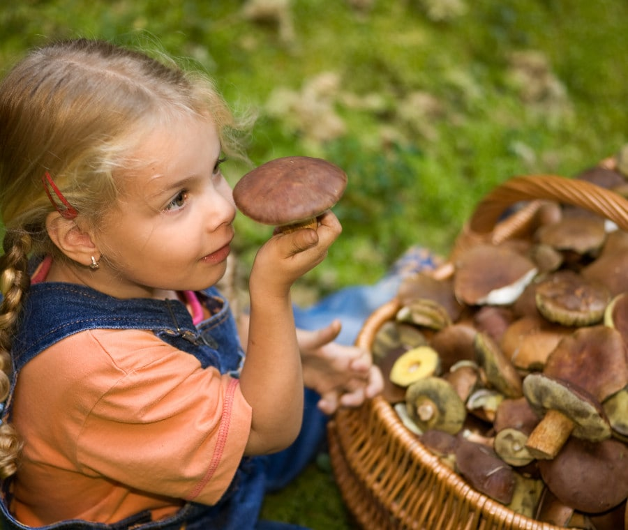 funghi-e-bambini