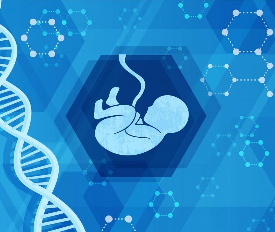 test-dna-fetale