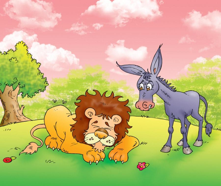 leone-asino