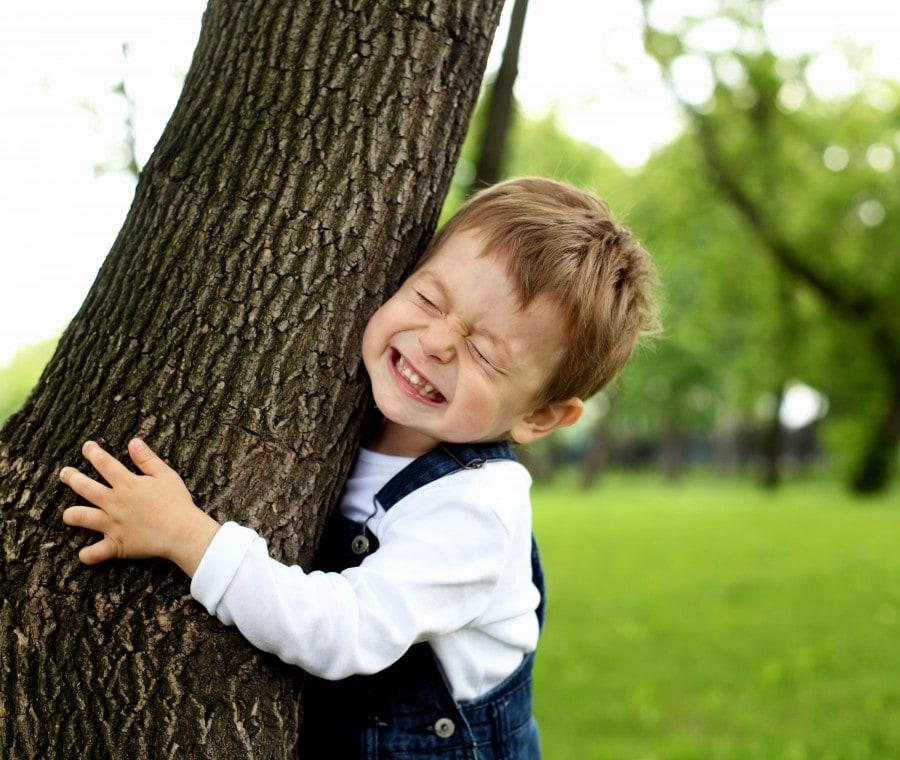 albero-bambino
