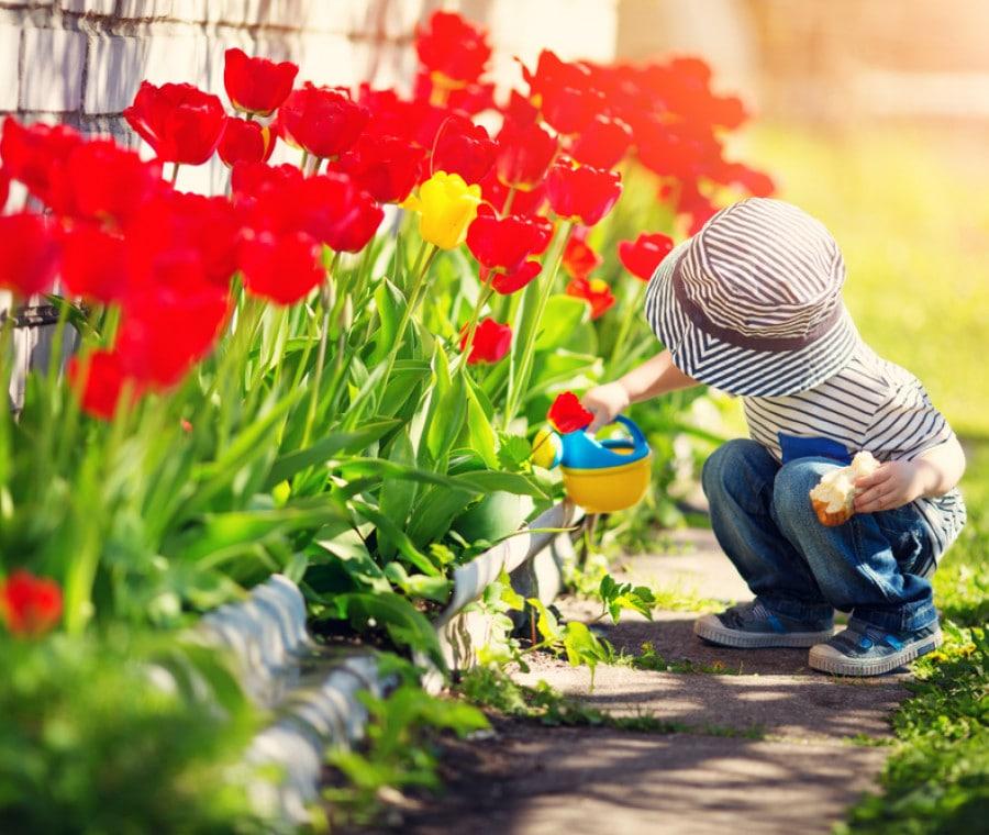 bambino-tulipani