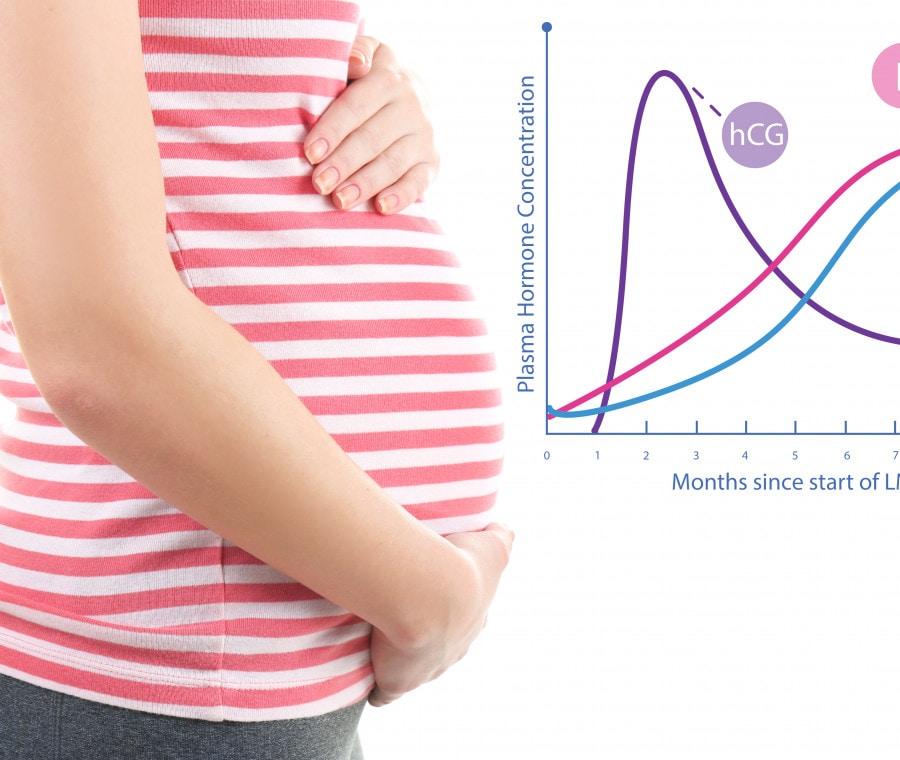 progesterone-in-gravidanza