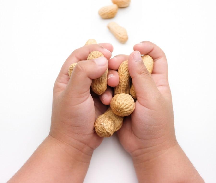 alimenti-allergizzanti-2