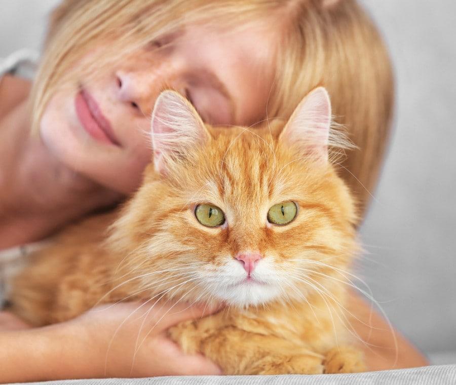 pet-therapy-con-gatto