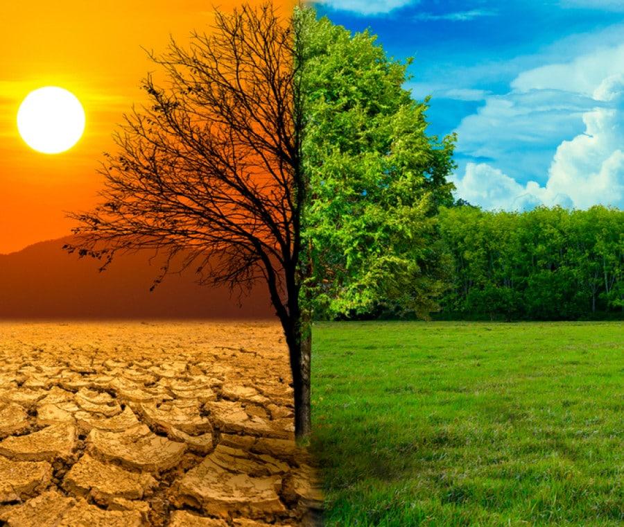 il-cambiamento-climatico-spiegato-ai-bambini