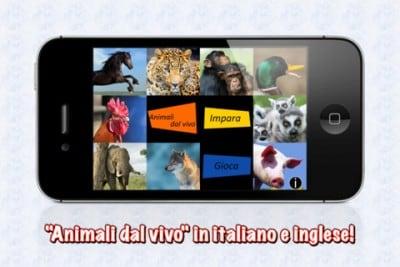 5.animalidalvivo.jpg