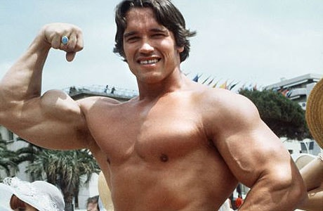 arnold460