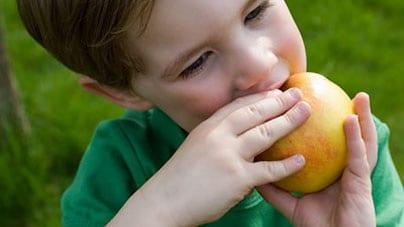 bambino-mangia-mela.180x120