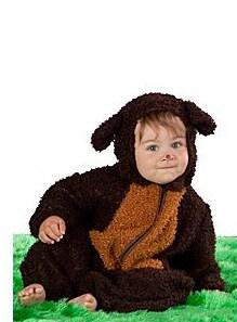costume-orso