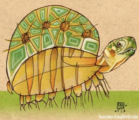 speedy-turtle-e
