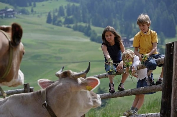 Family_Resort_Emmy_Alto-Adige_Fie_allo_Sciliar.jpg.180x120