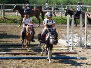 Pony-Cart-della-Fattoria-Lasiria-in-provincia-di-Novara