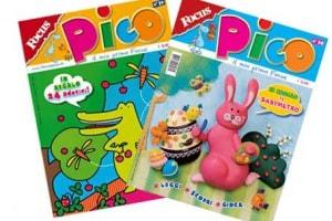 focus-pico-gruppo