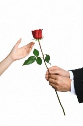 rosa-san-valentino