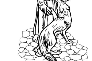 sanfrancesco.jpg
