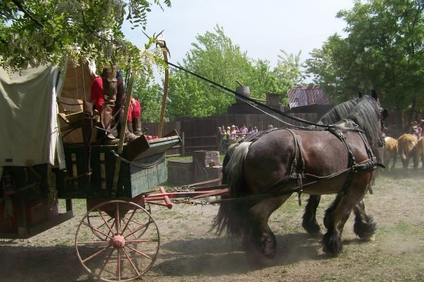 9-Cowboyland_Voghera-2