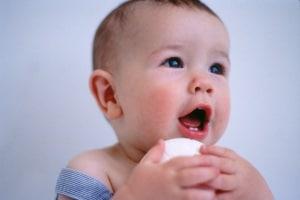 primi-dentini