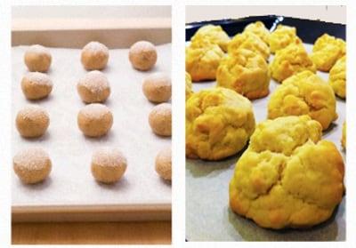 biscotti-zenzero-canada.180x120