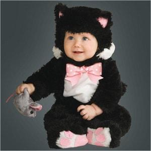 costume-gattino