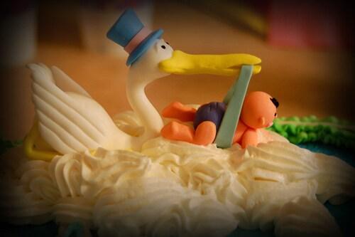 Torta_cicogna-20000