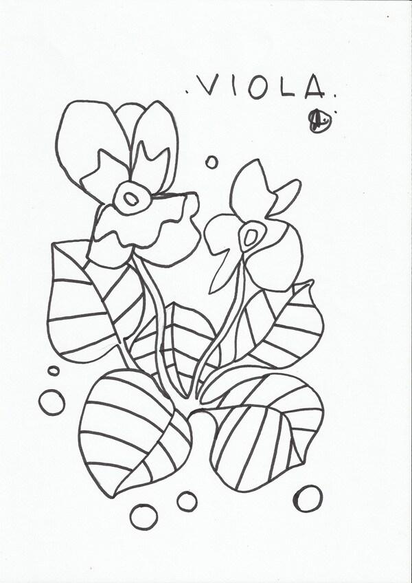 Disegno Da Colorare La Viola Nostrofiglioit
