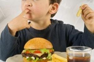 bimbo-junk_food1.jpg.180x120