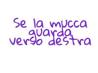 mucca7
