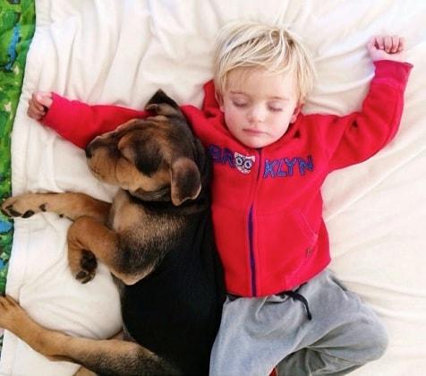 cucciolo-e-bambino-4