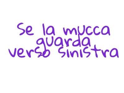 mucca6