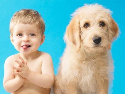 cane-bambino1.180x120