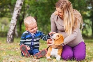 cane a bambino