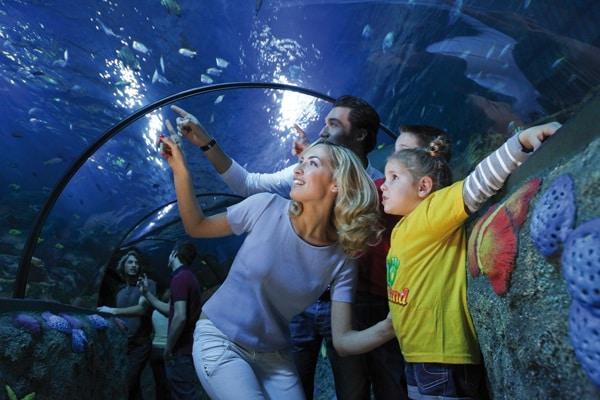 Gardaland-SEA-LIFE-Aquarium-Tunnel-Oceanico.180x120