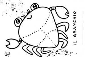 Disegni animali marini for Disegni cavallucci marini