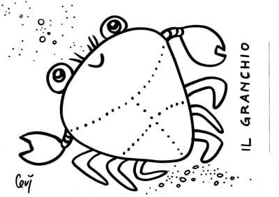 Disegni da colorare dell 39 estate for Immagini di animali marini da colorare