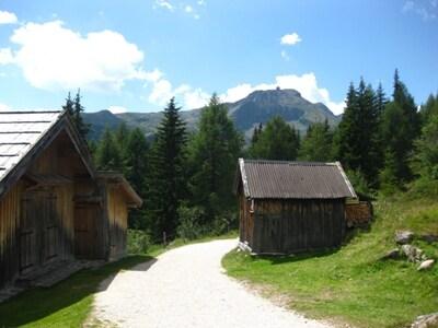 Paesaggio-Sentiero-Passo-San-Pellegrino-3.JPG