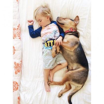 cucciolo-e-bambino-1