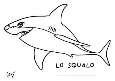Disegno squalo per bambini affordable disegno di for Squalo da colorare per bambini