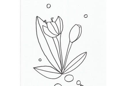 Disegno Da Colorare Il Tulipano Nostrofiglio It