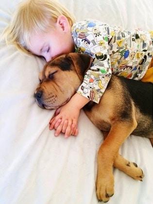cucciolo-e-bambino-10