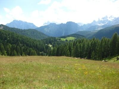 Paesaggio-Sentiero-Passo-San-Pellegrino-5.JPG