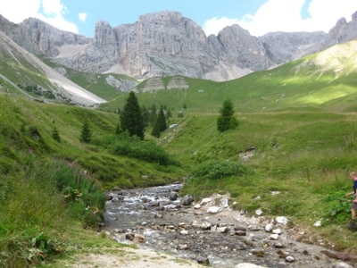 Paesaggio-Sentiero-Passo-San-Pellegrino-8.JPG
