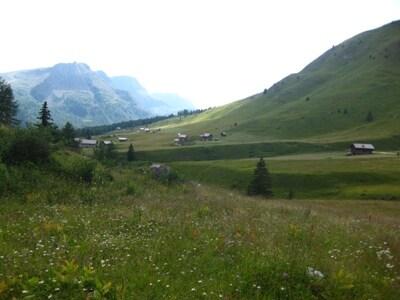 Paesaggio-Sentiero-Passo-San-Pellegrino-10.JPG