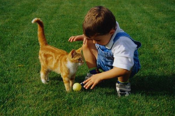 gatto_bambino.jpg