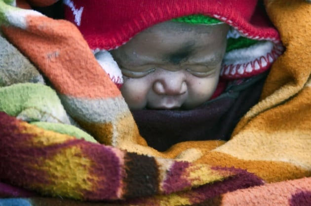 neonatoviaggiotraighiacci